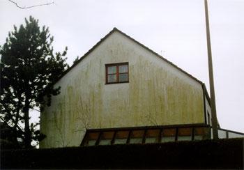 Binker Materialschutz Gmbh Algen Auf Fassaden