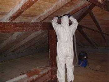 Binker Materialschutz Gmbh Schimmelpilzbefall Am Dachstuhl